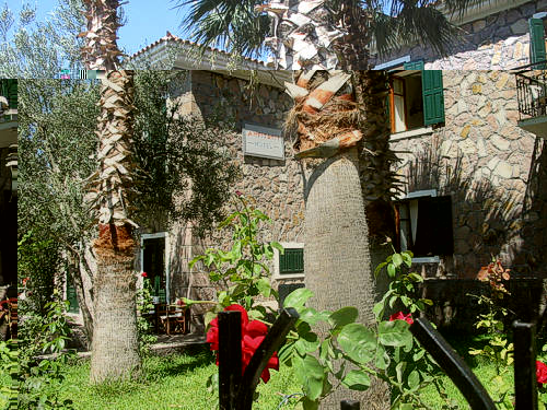 AMFITRITI Hotel amongst native trees & flowers and only 50 meters from the beach.